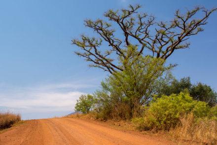 Republika Południowej.Afryki (RPA)